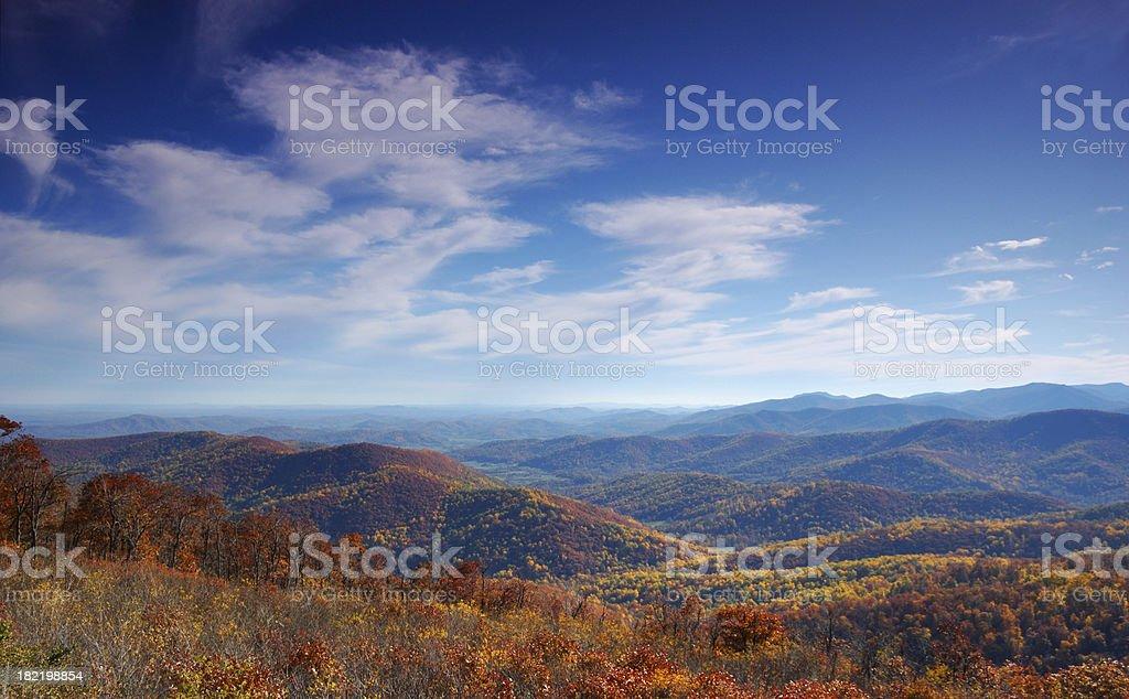 Fall Foliage royalty-free stock photo
