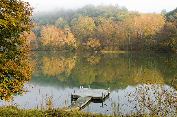 Fall foliage reflections on a placid river Reflections of fall foliage on the river on a misty morning. Mist is causing a painterly effect in the trees. Focus on ramp. monongahela river stock pictures, royalty-free photos & images