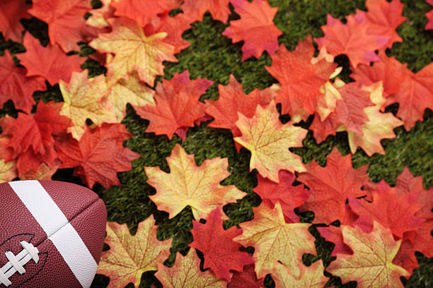 Fall football stock photo
