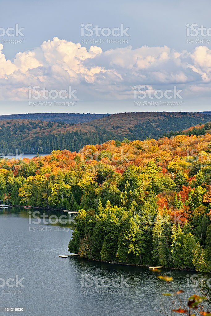 Fall forest and lake stock photo