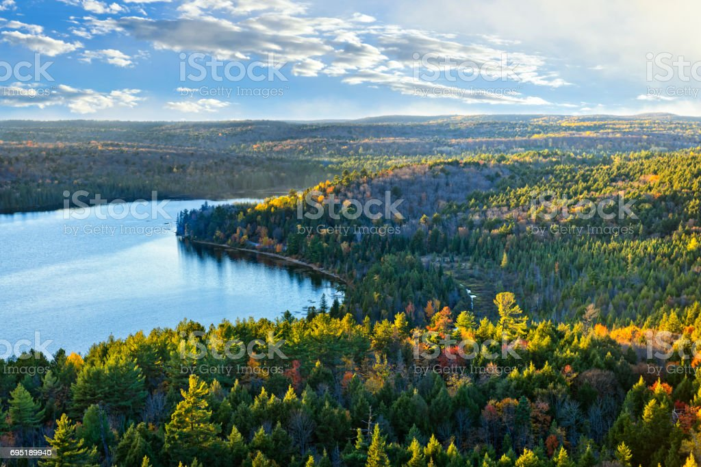 Fall forest and lake top view stock photo