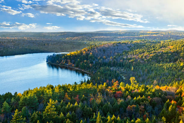 Fall forest and lake top view Fall forest and lake with colorful trees from above in Algonquin Park, Canada taiga stock pictures, royalty-free photos & images