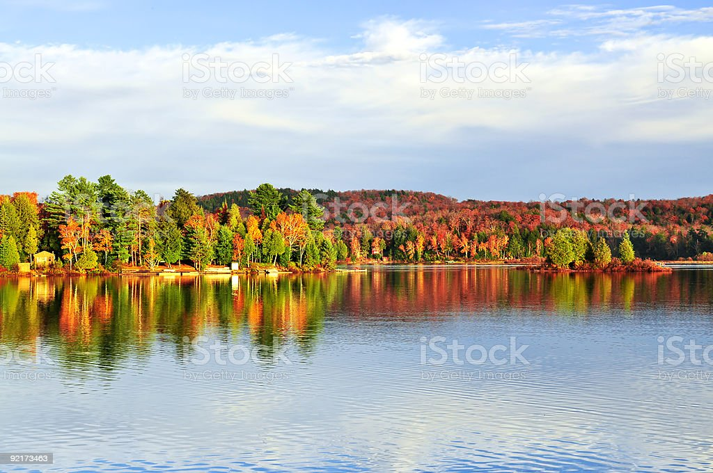 Fall forest reflections stock photo