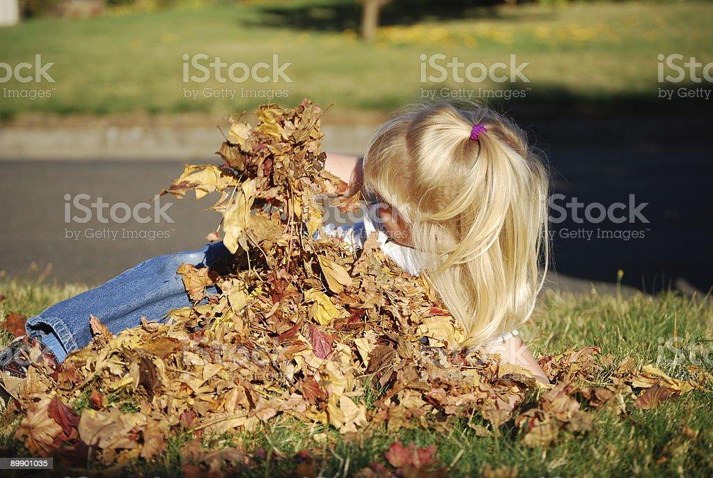 Fall Fun royalty-free stock photo