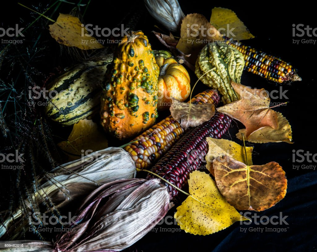 Fall gourds and Leaves stock photo
