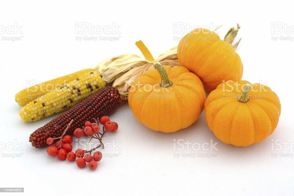 Fall Harvest Arrangement royalty-free stock photo