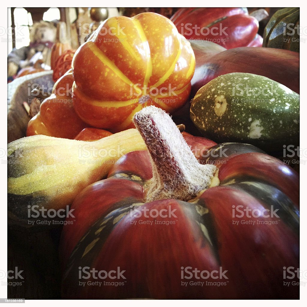 Fall Harvest Decorations royalty-free stock photo