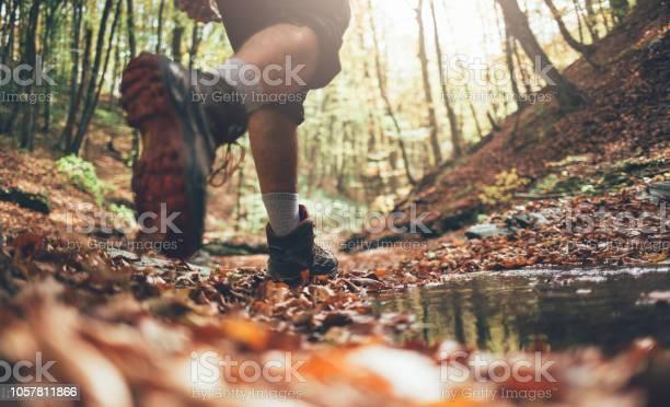 Photo of Fall hiking