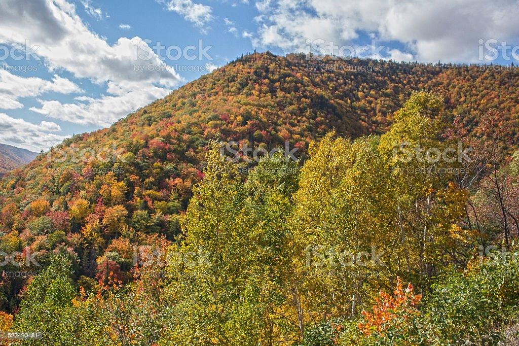 Fall Hill stock photo