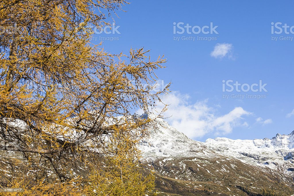 Fall in mountains royalty-free stock photo
