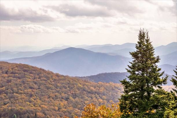 fall in north georgia usa - north stock photos and pictures