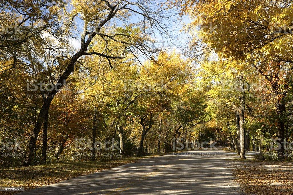 Fall in Oklahoma royalty-free stock photo