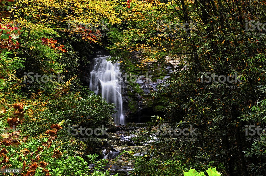 Fall in Smoky Mountain National Park royalty-free stock photo