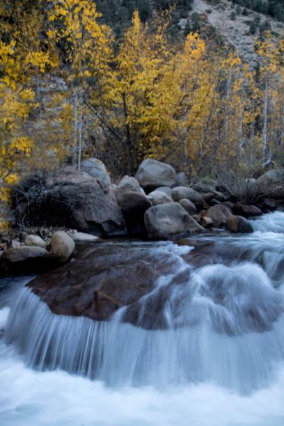 Fall in The Eastern Sierras stock photo