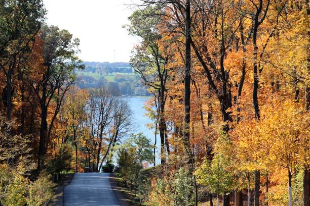 Fall in the MidWest Beautiful yellow, red, and orange fall leaves in Wisconsin with a road running to the blue lake in the background. wisconsin stock pictures, royalty-free photos & images
