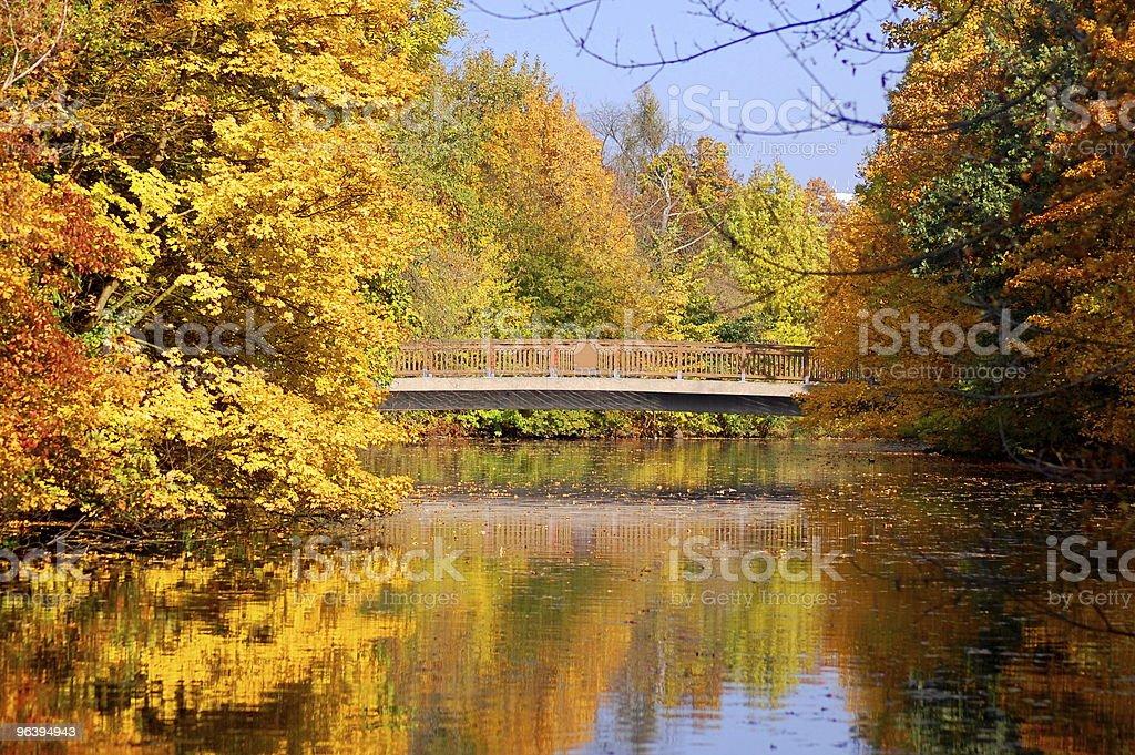 秋の公園で木々と青空の下で - カラフルのロイヤリティフリーストックフォト