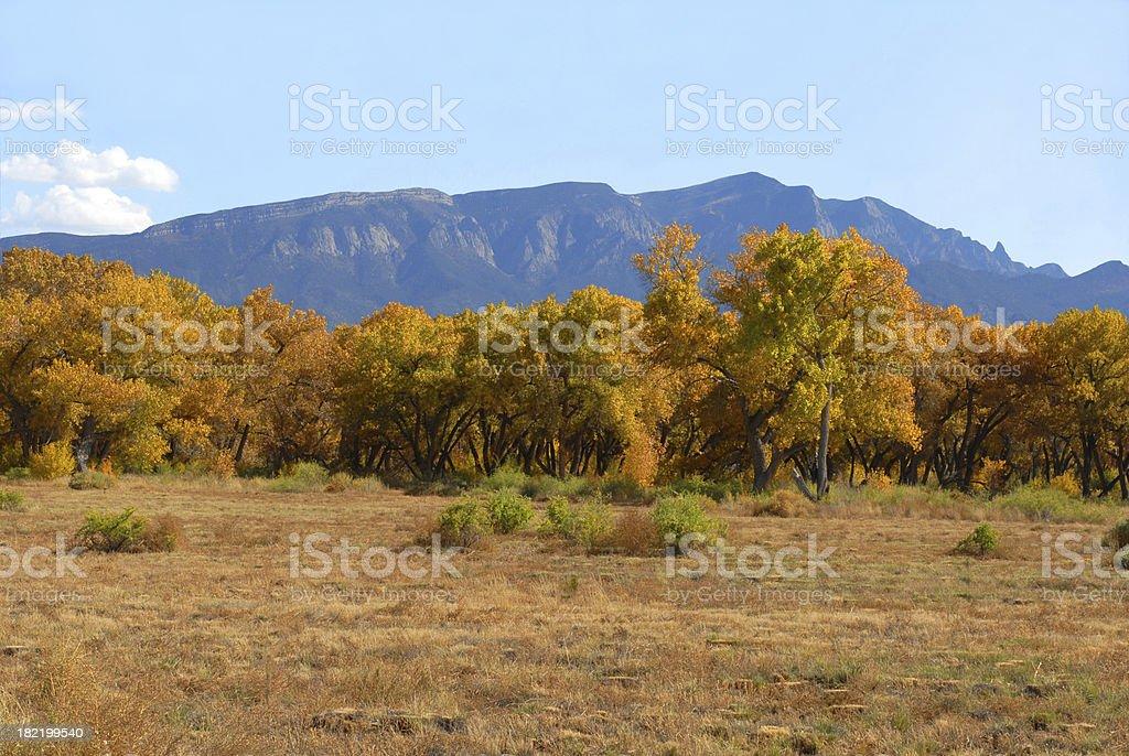 Fall in the Sandia Mountains stock photo