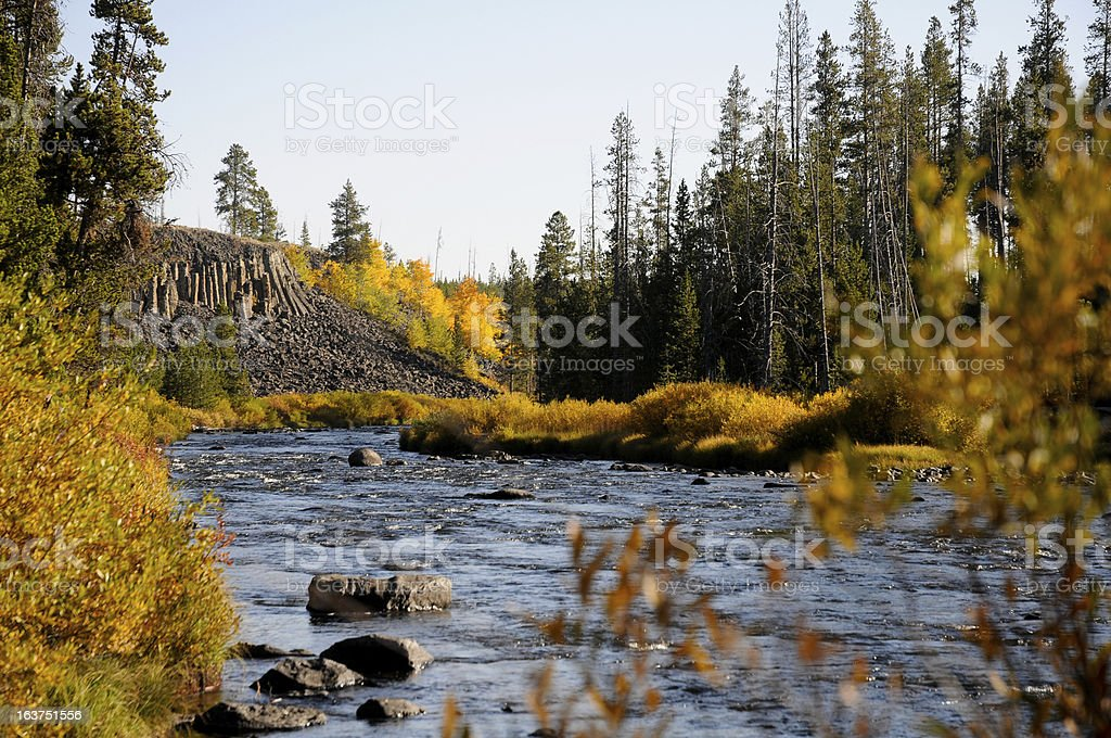 Fall in Yellowstone royalty-free stock photo