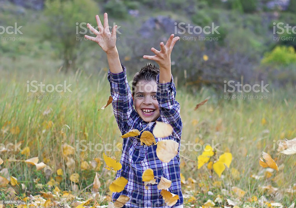 Fall is here! royalty-free stock photo