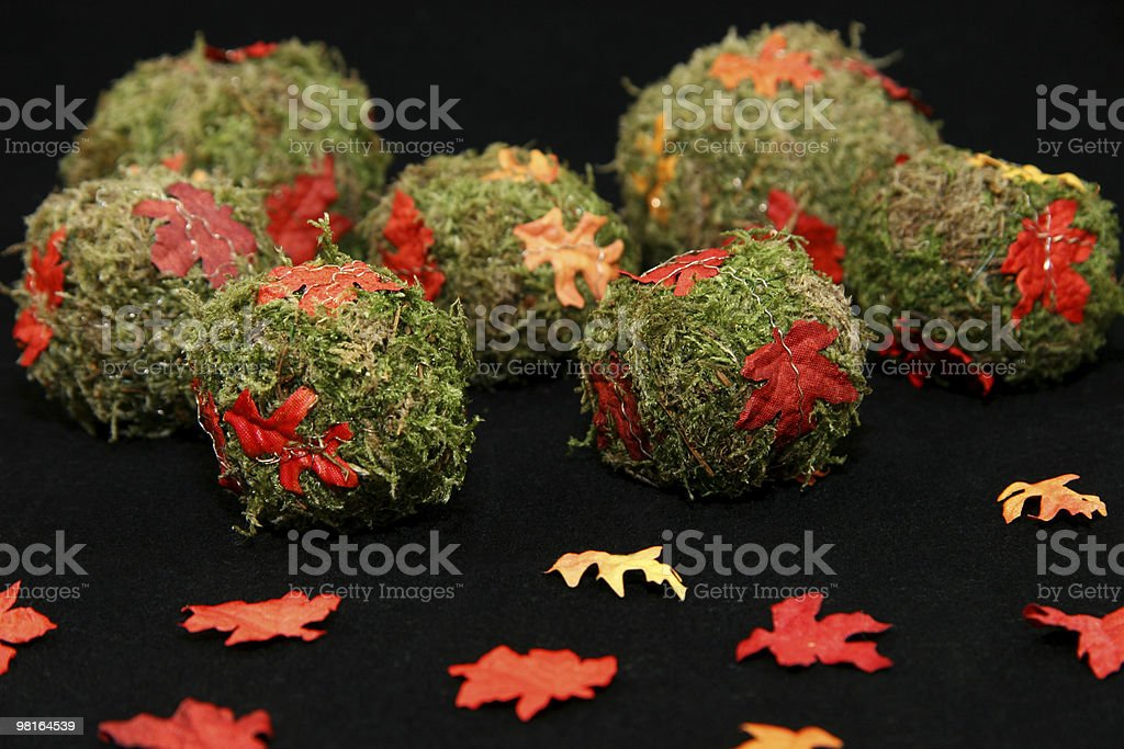 fall is rolling on royalty-free stock photo