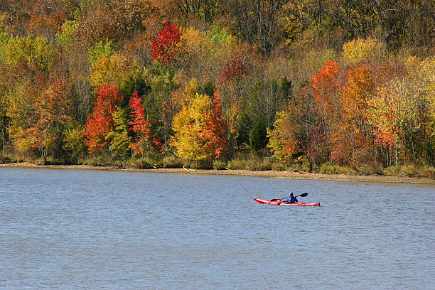 Fall Kayaker stock photo