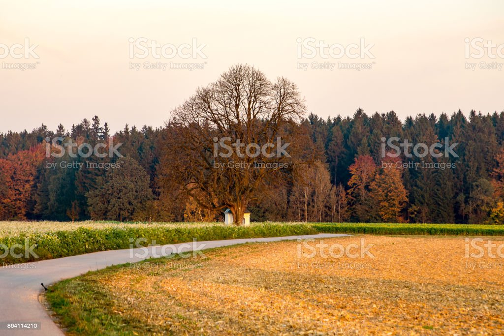 Fall landscape in Bavaria royalty-free stock photo