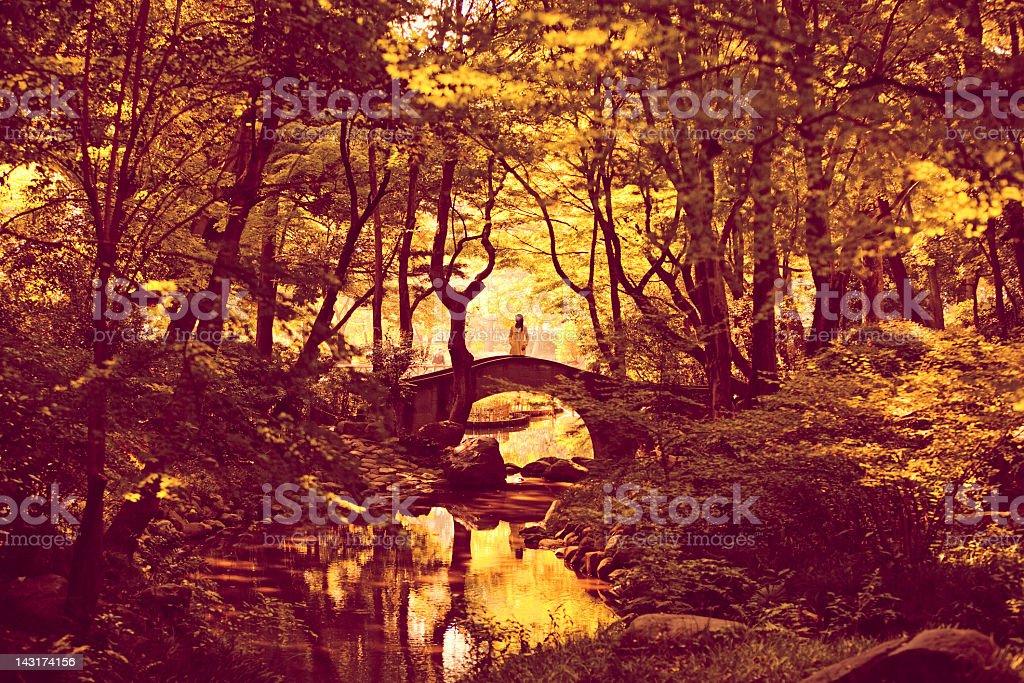 Fall landscape stock photo