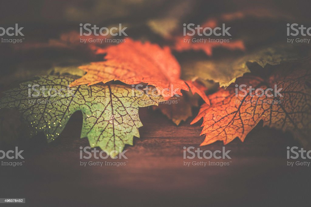 Fall leaf border on wood background stock photo