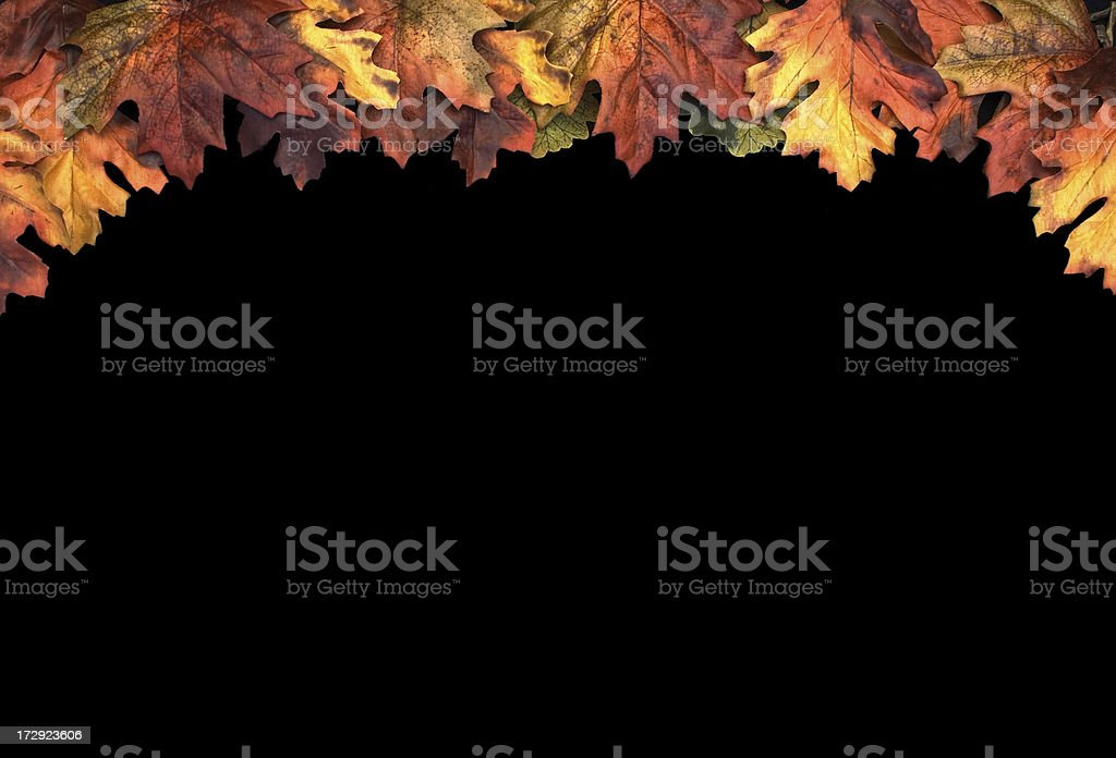 Fall Leaf Border royalty-free stock photo