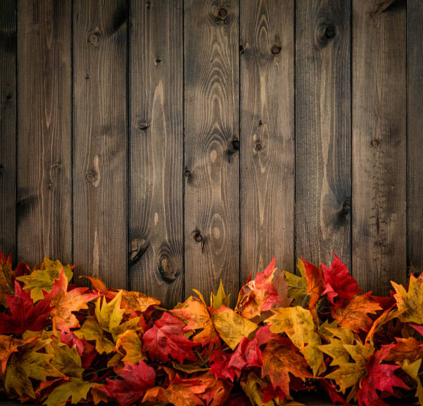 Fall Leaves Background With Copy Space For Holiday Messages Stock Photo