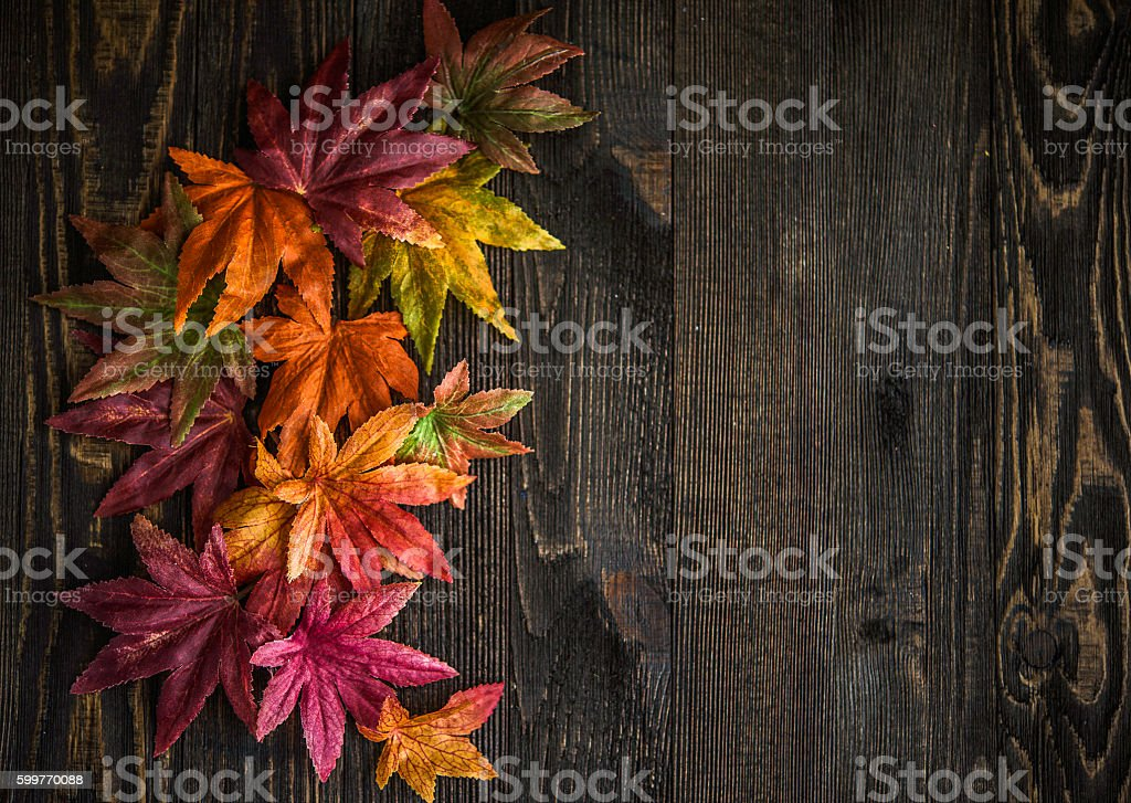 Fall leaves background with wood background for Thanksgiving messages stock photo