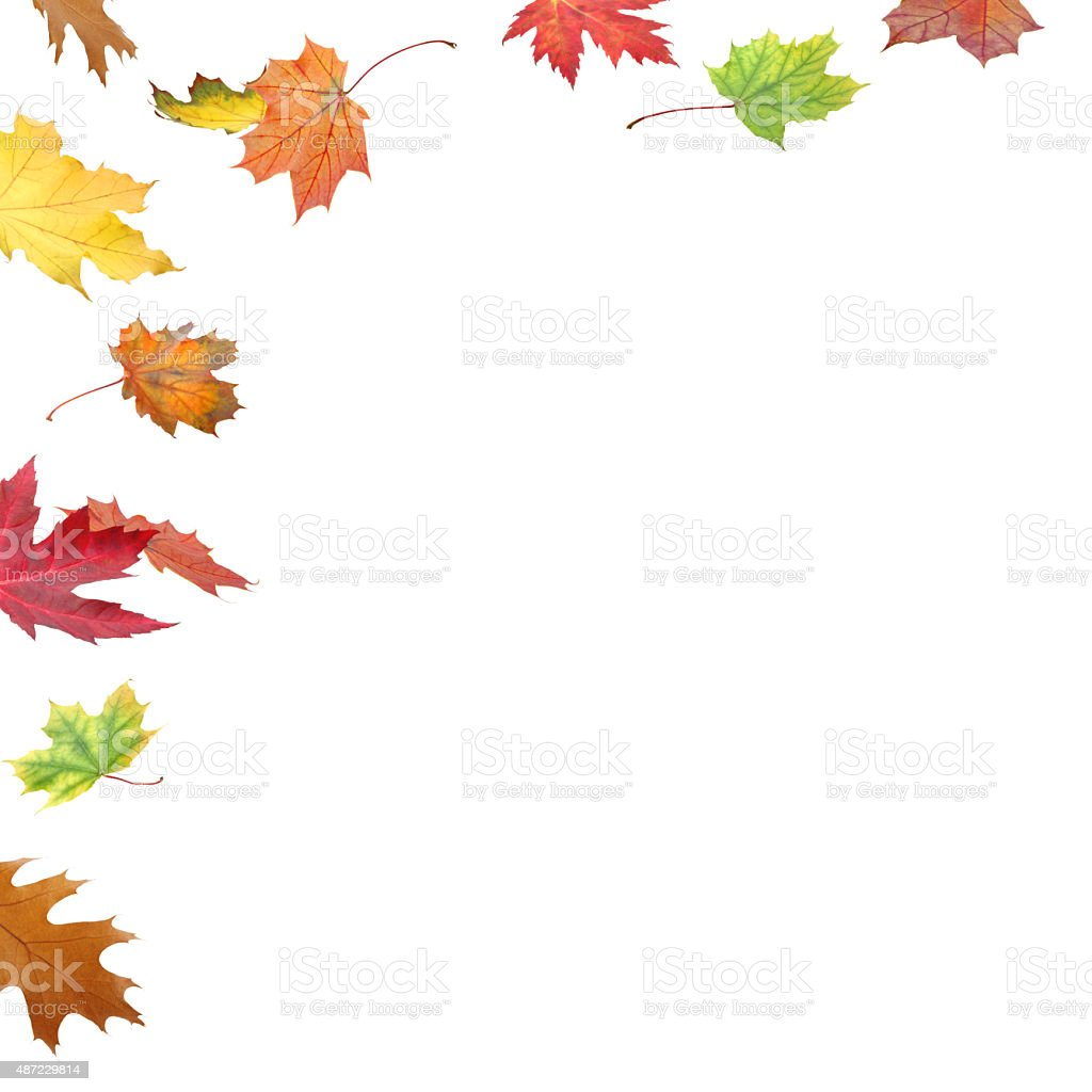 Fall Leaves Border Stock Photo Amp More Pictures Of 2015