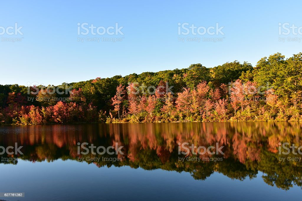 Fall Leaves by the Lake in Pennsylvania stock photo