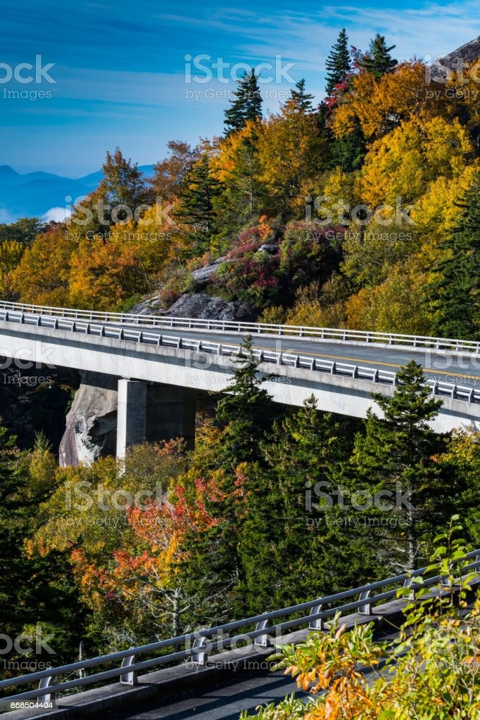 Fall Leaves Changing in the Curves stock photo