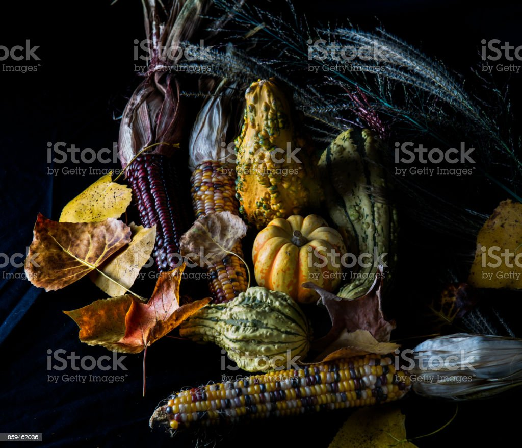 Fall Leaves, Gourds and Corn stock photo