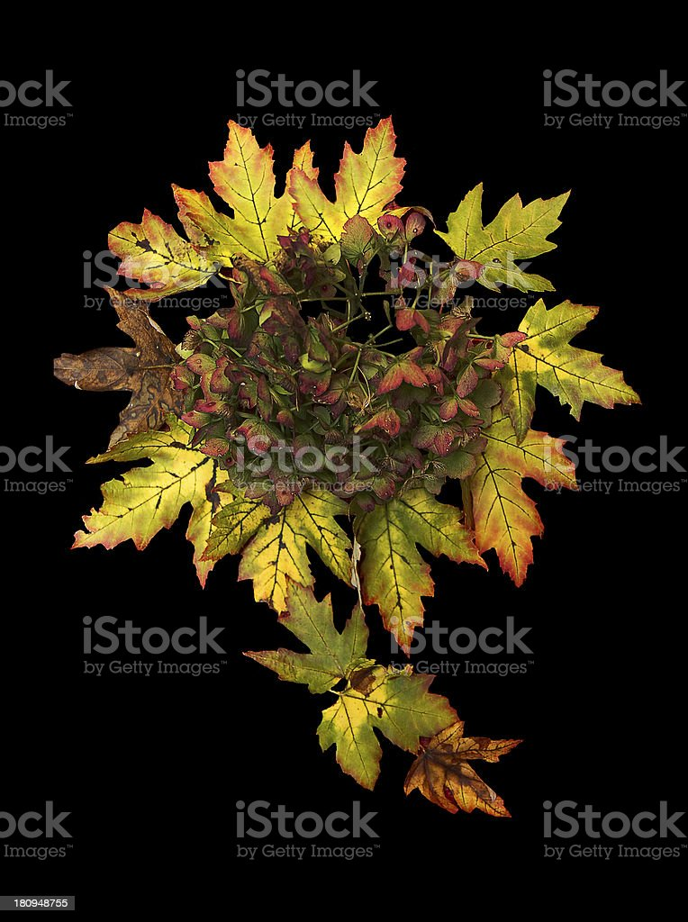 Fall Leaves Wreath royalty-free stock photo