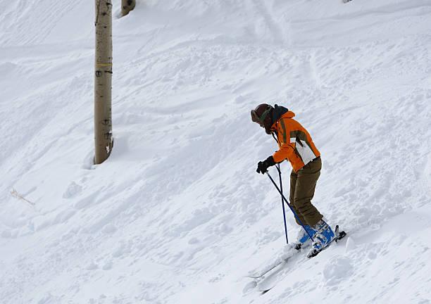 Fall Line Skiing stock photo