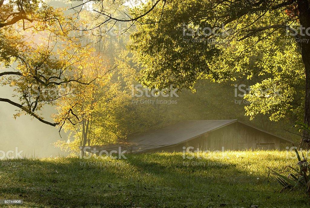 Fall Morning royalty-free stock photo