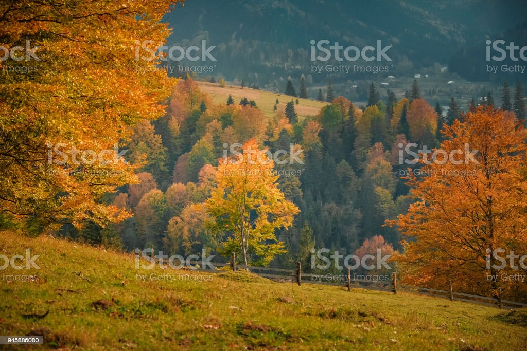 Fall nature of Carpathian mountain stock photo