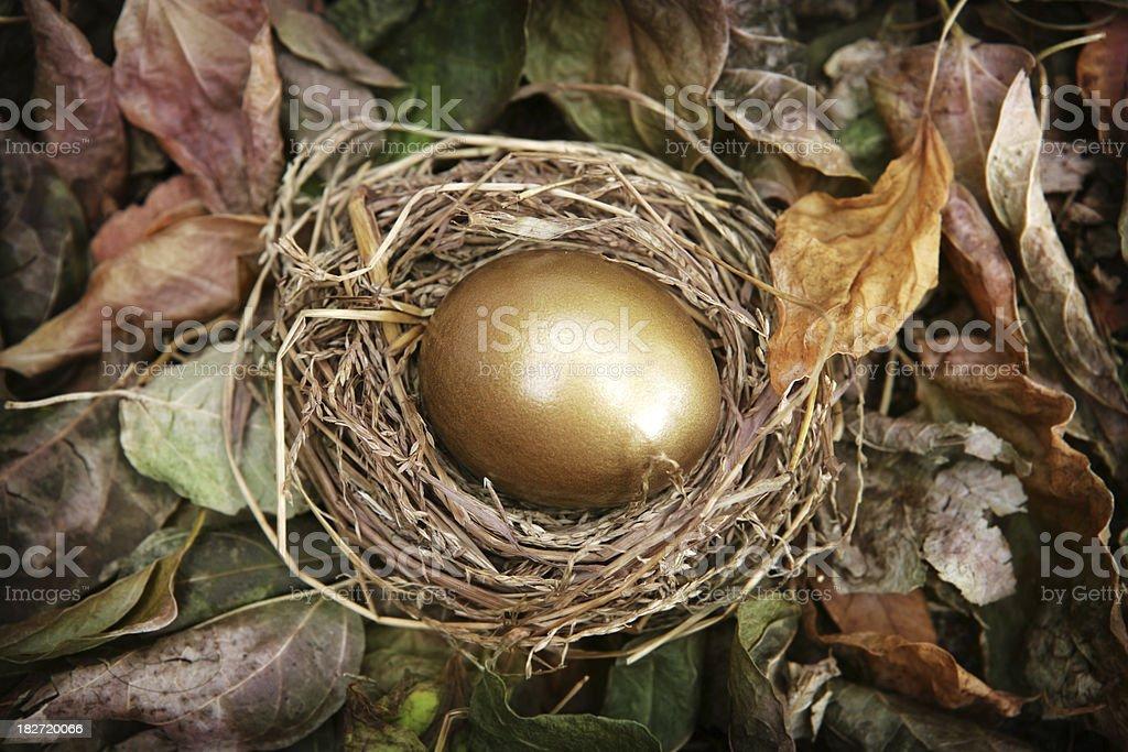Fall Nest Egg stock photo