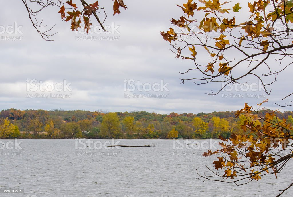Fall on the lake royalty-free stock photo