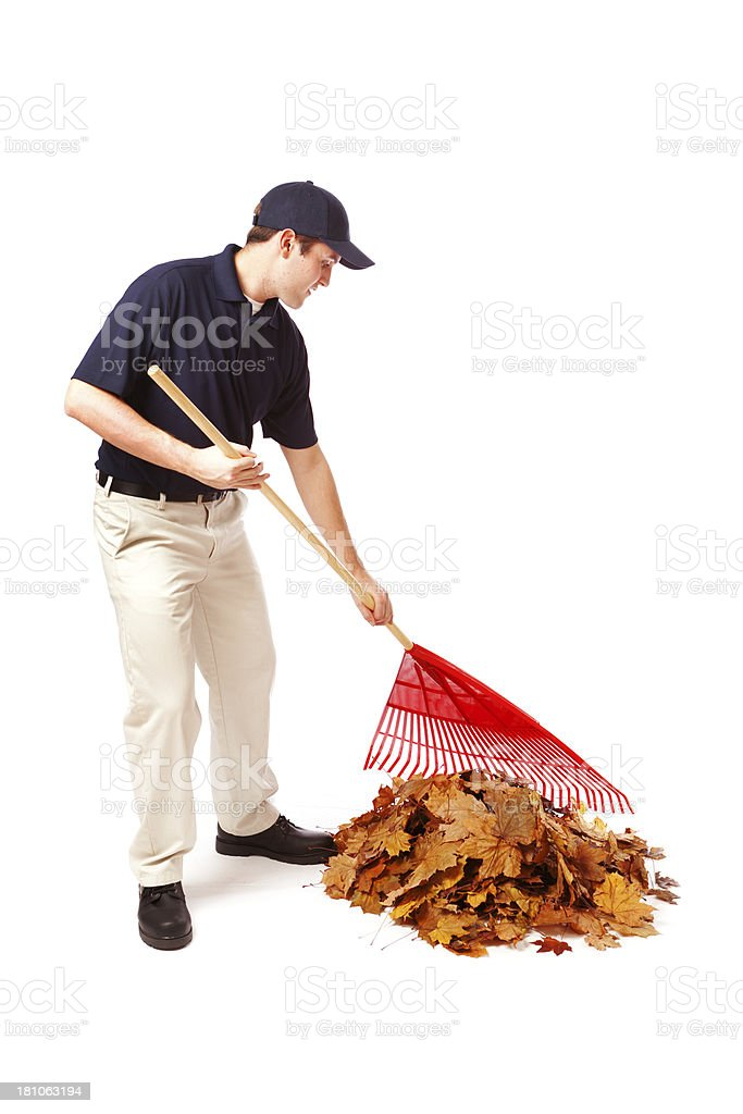 Fall Outdoor Clean-Up Service Man Raking Leaves on White stock photo
