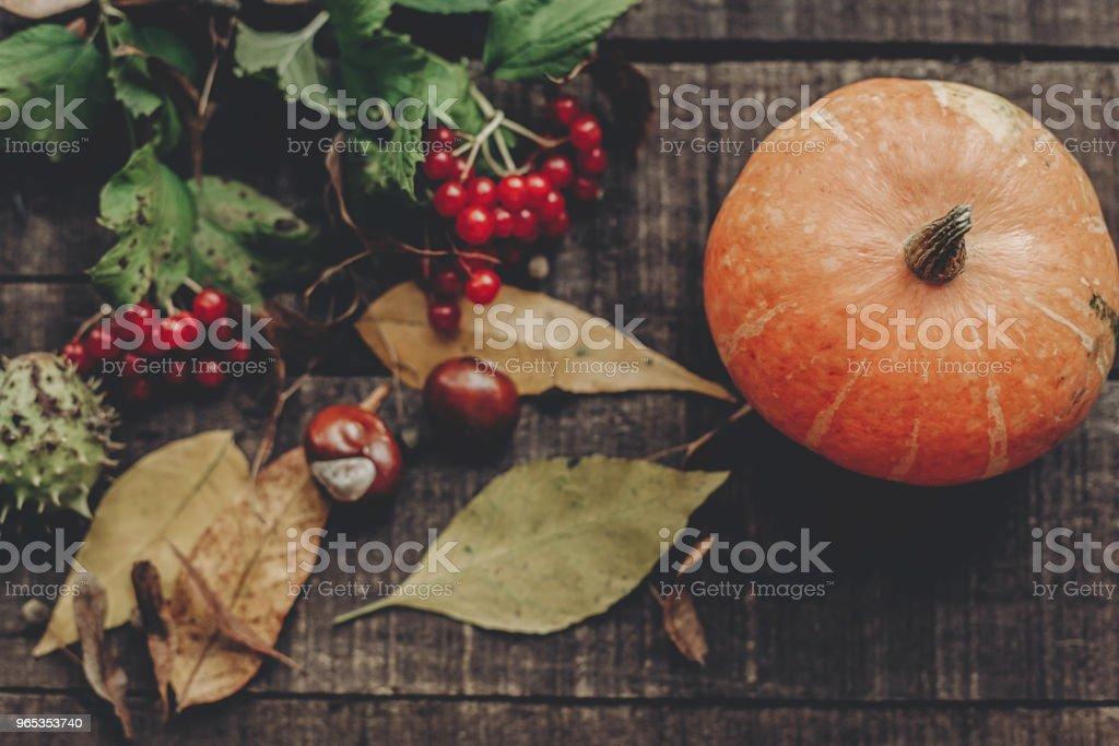 가 사진와 아름 다운 호박 잎과 소박한 나무 배경, 평면도에 딸기. 텍스트를 위한 공간입니다. 추수 감사절 이나 할로윈 개념 인사말 카드 플랫 하다입니다. 아늑한가 분위기입니다. 휴일 - 로열티 프리 10월 스톡 사진