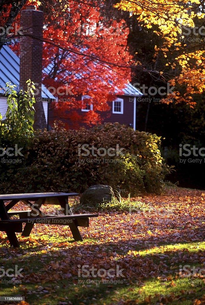 Fall Picnic royalty-free stock photo