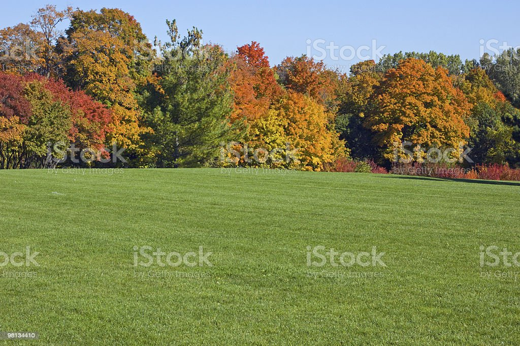 L'autunno foto stock royalty-free