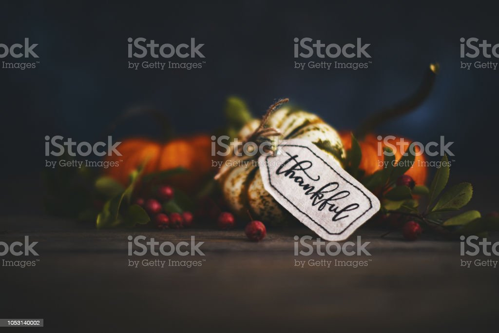Fall pumpkin arrangement with message of Thanks stock photo