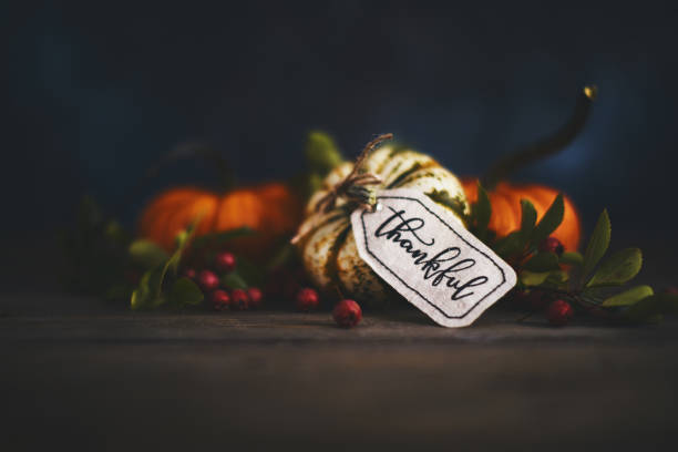 fall pumpkin arrangement with message of thanks - thanksgiving stock photos and pictures