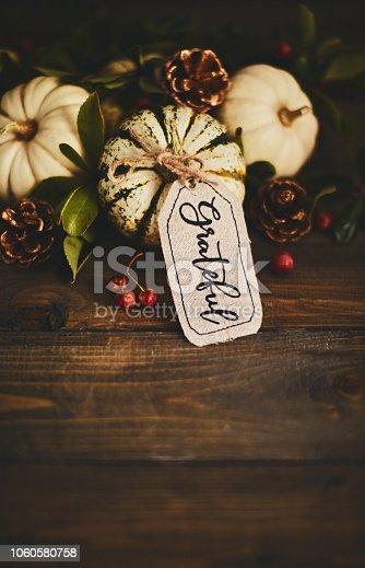 Fall pumpkin background with Grateful message