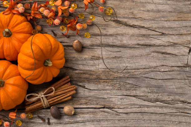 fall pumpking spice holiday background. - gourd stock photos and pictures
