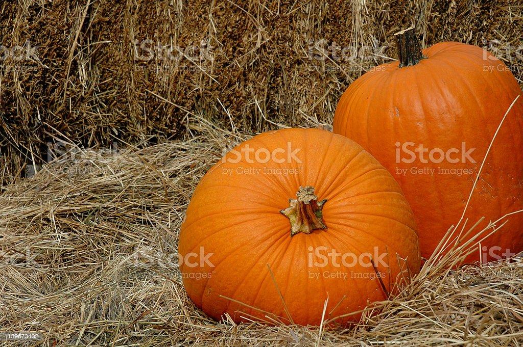 Fall Pumpkins 2 royalty-free stock photo